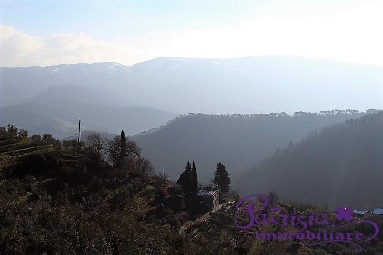 Terratetto  Vendita Cantagallo